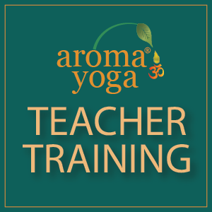 AY Teacher Training