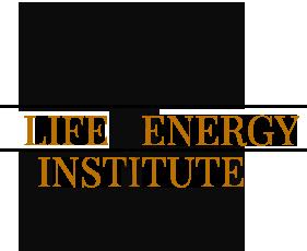 Life Energy Institute